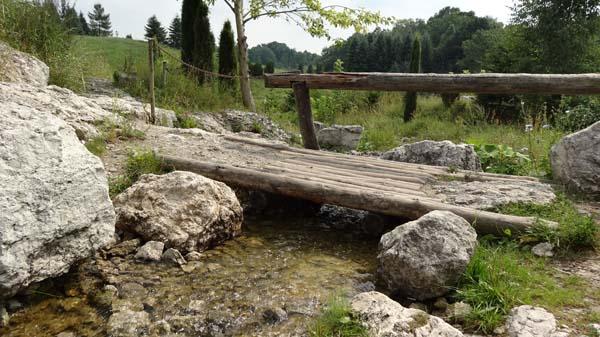 Botanical Garden in Myslecinek