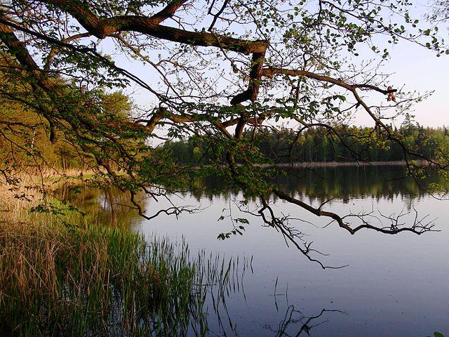 Lipno - nature-landscape complex