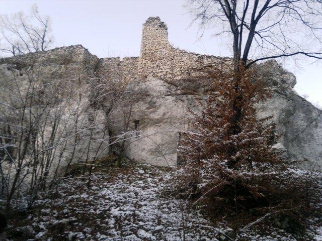 Bakowiec Castle in Morsk