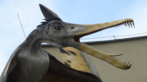 Zaurolandia – Park Dinozaurów w Rogowie