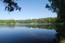 640px-jezioro_czarne_wigierskie_1.jpg