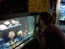 aquario2106.JPG