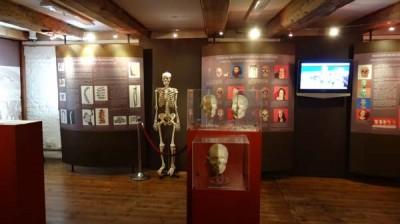 """Centrum Edukacji Archeologicznej """"Błękitny Lew"""""""