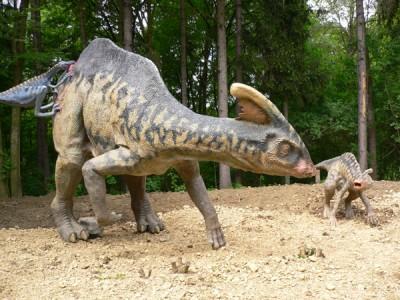 DinoPark Wyszków