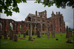 melrose-abbey1 (3).jpg