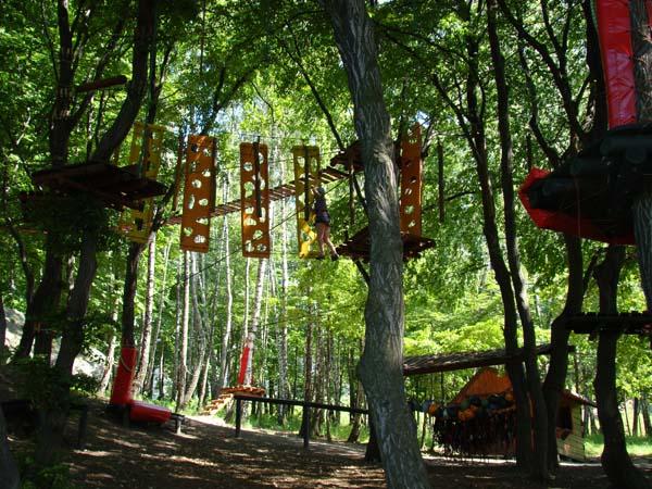Park linowy Adrenalina Park w Podzamczu