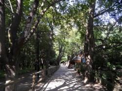 park_2805.jpg