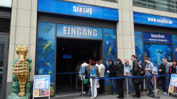 sea-life-berlin1.jpg