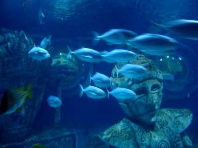 Sea Life Paryż
